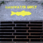 Weather cancels painting Yellow Fish Road today