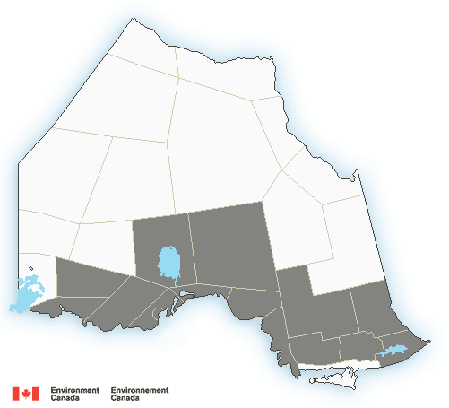 Freezing rain warning for Kingston region
