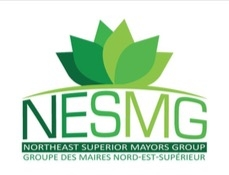 NESMG